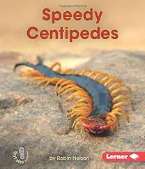 Backyard Critters: Speedy Centipedes
