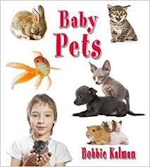 Baby Pets: It's Fun to Learn About Baby Animals