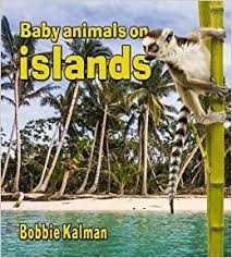 Baby Animals on Islands: The Habitats of Baby Animals