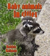 Baby Animals in Cities: The Habitats of Baby Animals