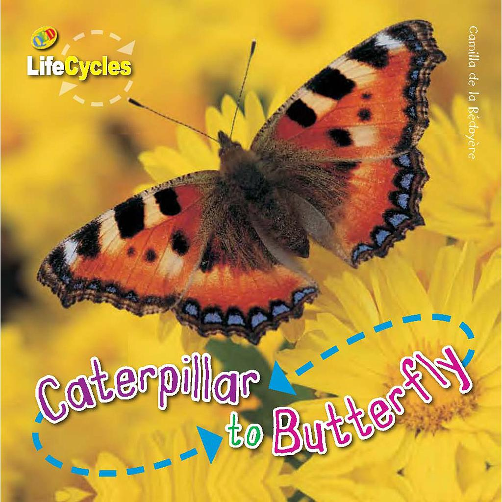 Life Cycles: From Caterpillar to Butterfly