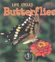 Butterflies: Animal Life Cycles (First Step)