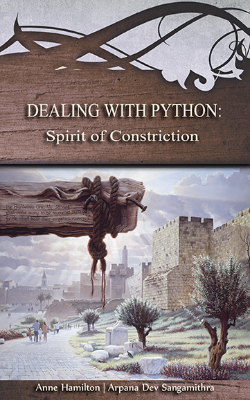 Dealing with Python: Spirit of Constriction