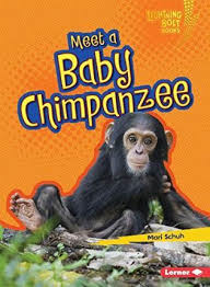 Baby African Animals: Meet a Baby Chimpanzee
