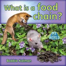 Animals In Our World: What is a Food Chain -  H - RR:14
