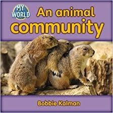 Animals in My World: An Animal Community - H - RR:14
