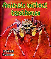Animals Without Backbones - Big Science Ideas