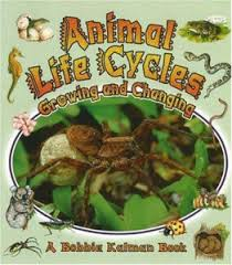 Animal Life Cycles: Growing and Changing (Nature's Changes)